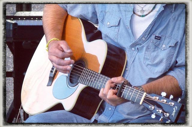 Free musician guitar guitar player instrument
