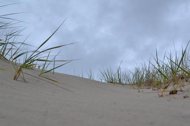 Free Photos: Sand dunes beach sand nature | MJ-8
