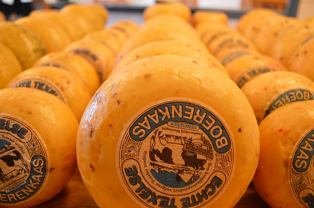 Free cheese texel farmer's cheese around shop yellow