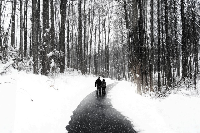 Free walking couple people walking snow snowfall nature