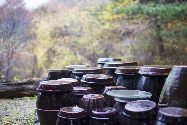 Free jar autumn storage autumn leaves rural landscape