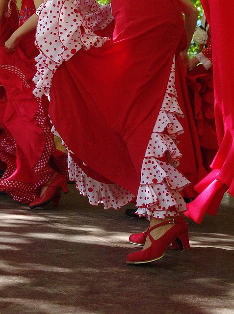 Free red skirts spanish shoes dance flamenco