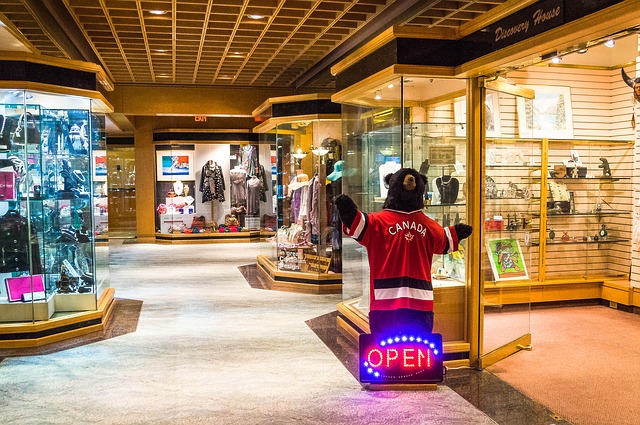 Free pan pacific hotel bear shops vancouver canada shop
