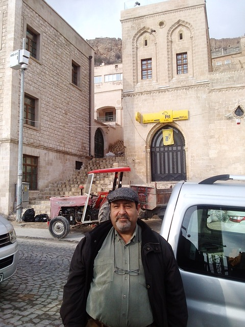 Free turkey mardin houses