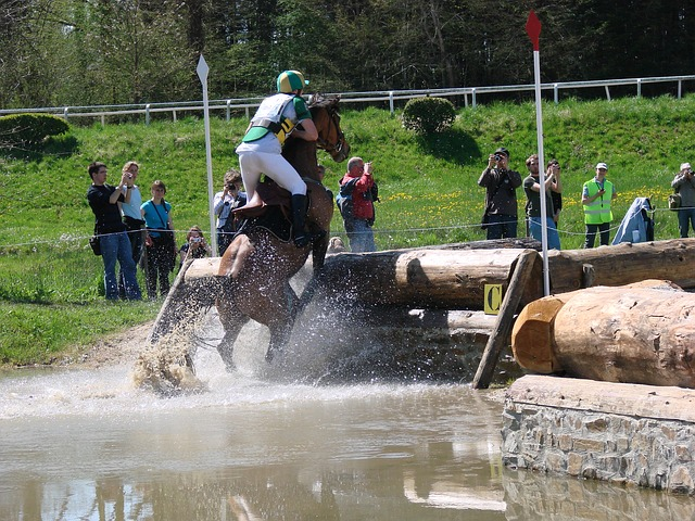 Free sport horseback riding horse obstacle cross