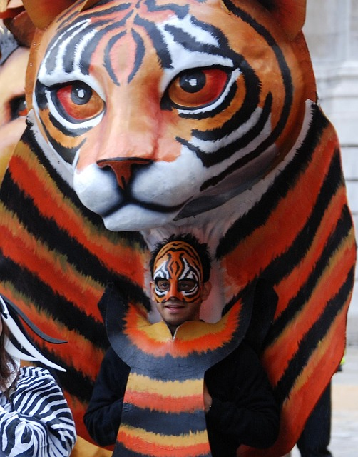 Free tiger mask costume parade face cat face carnival
