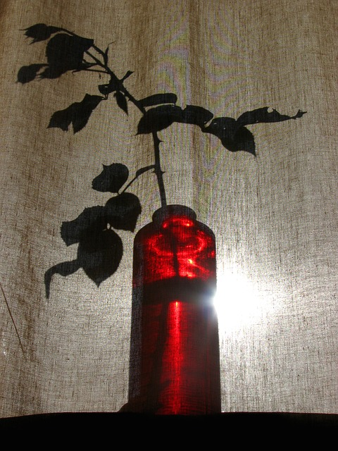 Free curtain vase red light shadow veiled shroud