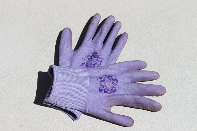 Free gardening gloves purple gloves work gardening