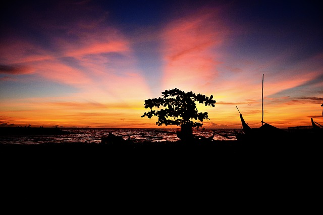 Free landscape silhouette sunset indonesia beach