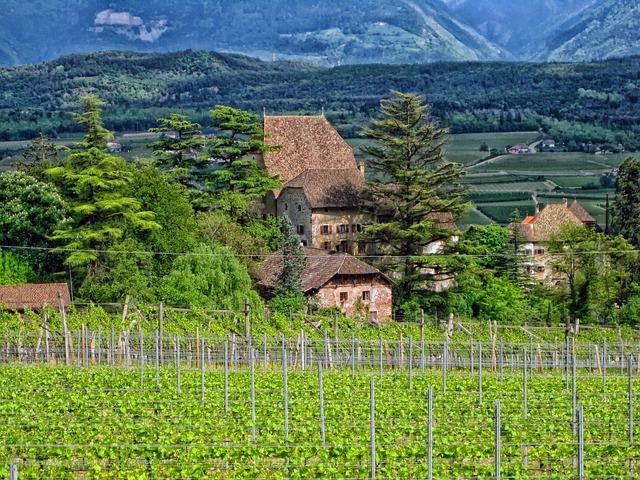 Free germany vineyard buildings house home field crops