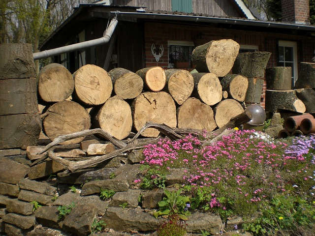 Free wood strains timber holzstapel firewood