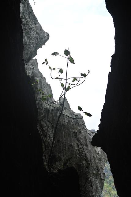 Free rocks caves limestone