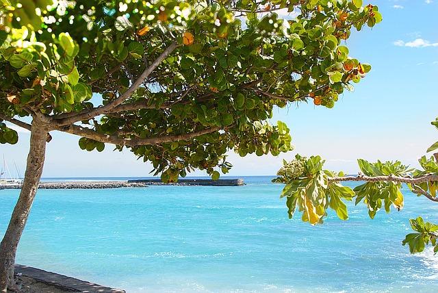 Free sea beach relax leisure ocean indian ocean side