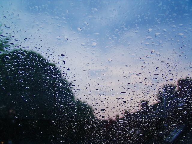 Free raindrop water rain wet beaded close close up