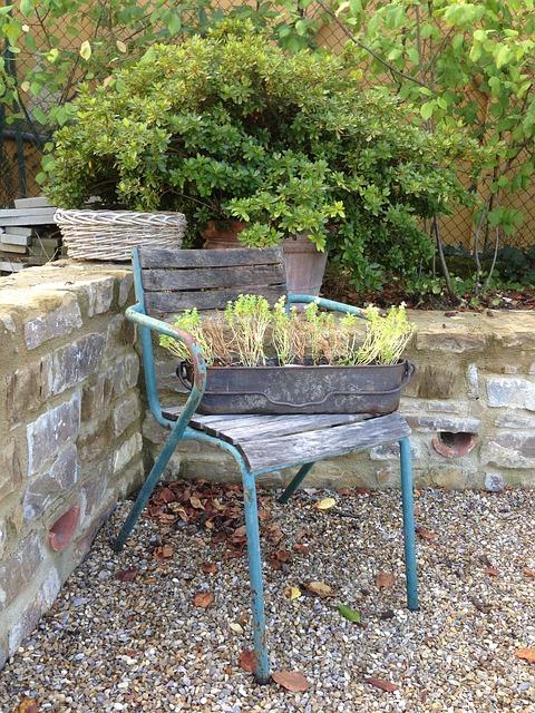Free chair vintage garden