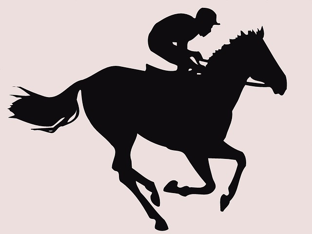 Free horse-racing jockey horseracing equine thoroughbred