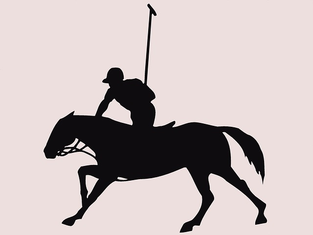 Free polo polo-sports horse rider animal cut-out