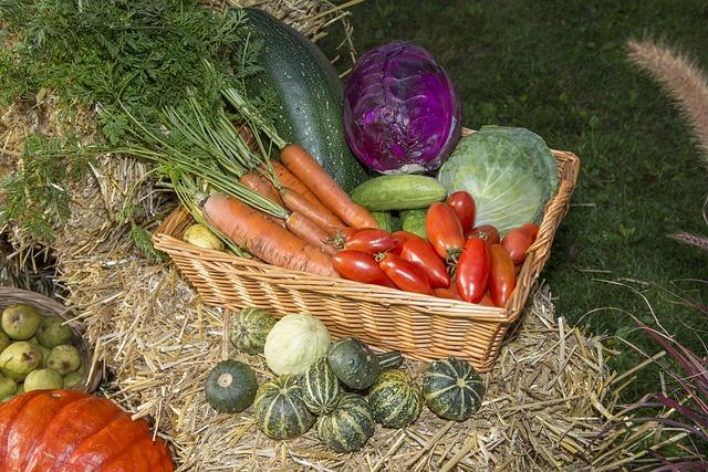 Free thanksgiving fruits festival vegetables autumn
