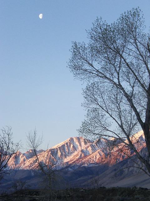 Free mountains trees moon snow peaks