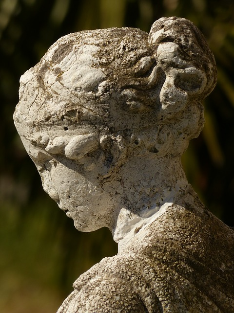 Free statue face girl weathered head side profile fig
