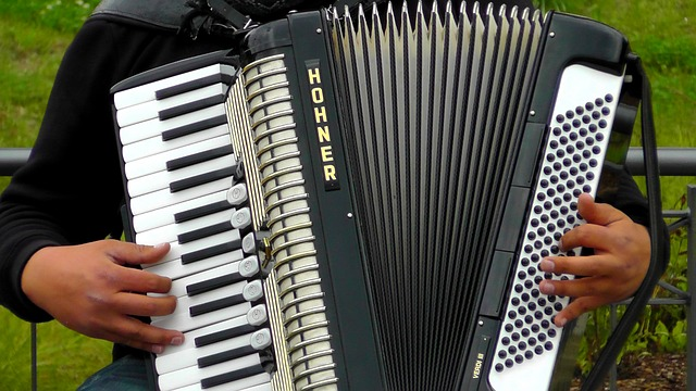 Free accordion musical instruments sound music