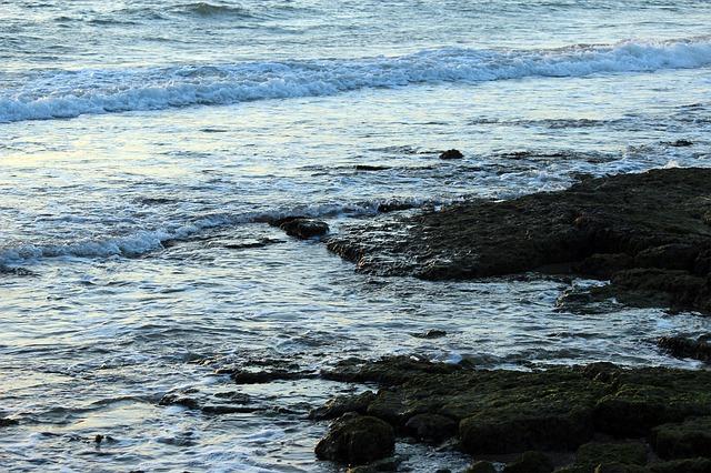 Free sea water surf sea water crest foam wave breaking