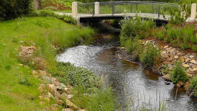 Free park water bridge bach plant beautiful harmony