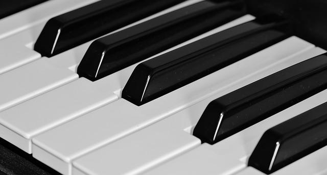 Free               piano keyboard keys music instrument black white