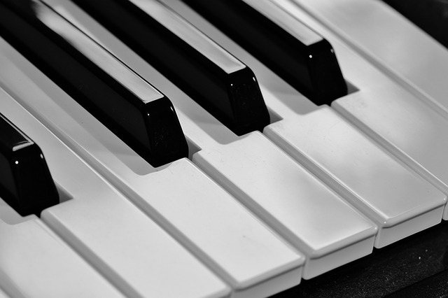 Free piano keyboard keys music instrument black white