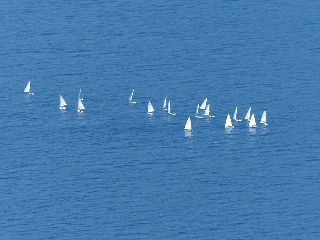 Free see sail sailing boats sailing school water sports
