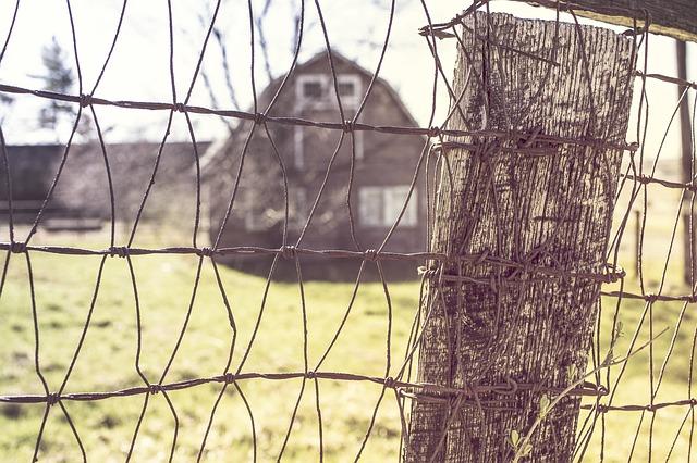 Free netting wire farm farm house barn fence wire mesh