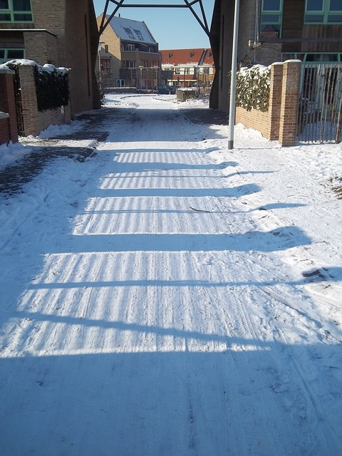 Free winter snow trails shadow