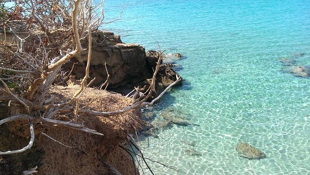 Free sea sardinia summer costa