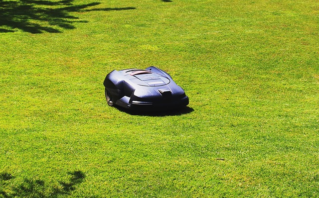 Free rush maintained lawn mower robot sunny