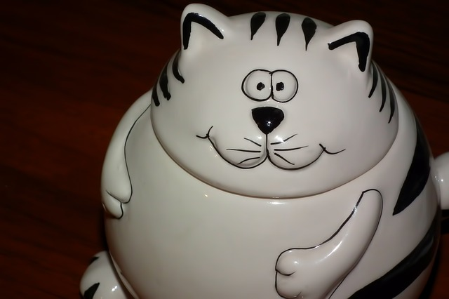 Free cat porcelain figurine tableware sugar bowl