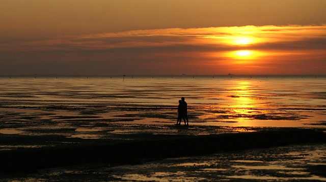 Free pair beach love watts wadden sea north sea sunset
