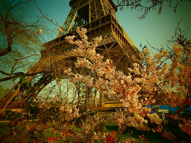 Free eiffel tower paris france steel structure steel