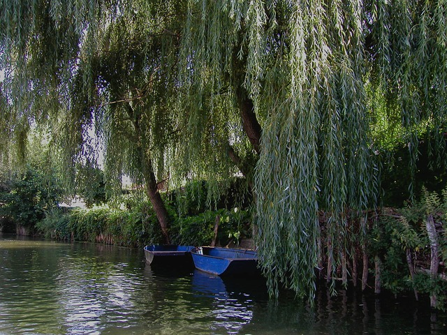 Free france water rest river
