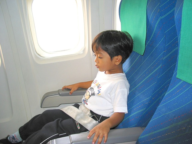 Free child boy airplane seat seat belt flight joy