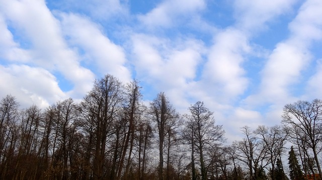 Free cloud clouds blue blue sky colors autumn sunshine