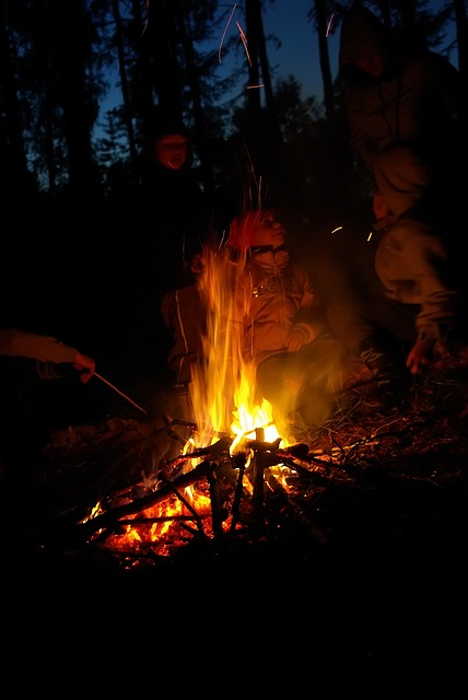 Free night koster fire kids burn campfire forest