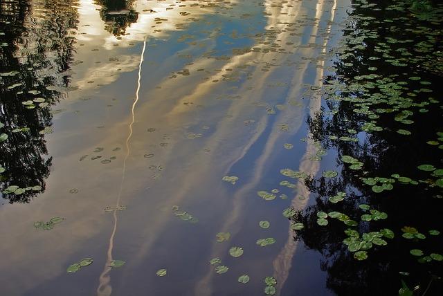 Free river reflection sky evening pond sunset