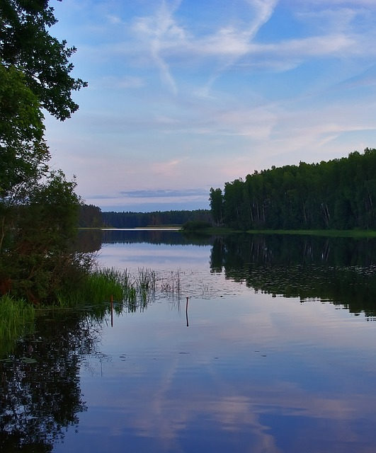 Free evening lake water blue landscape forest