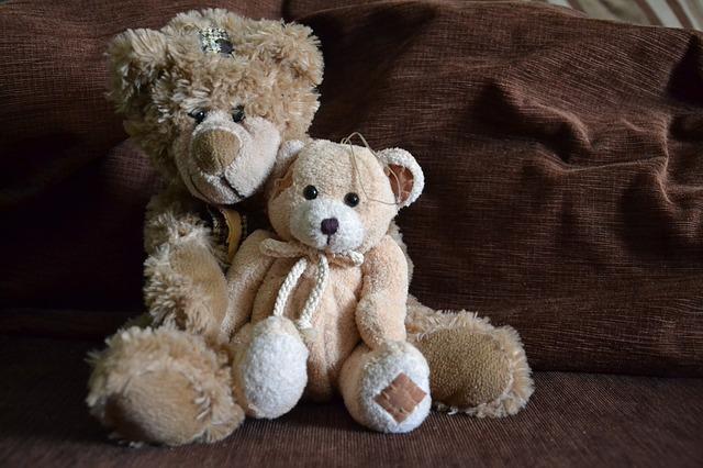 Free teddy bear bears misiak plush toy toys