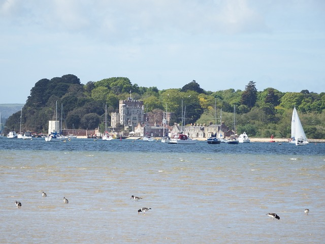 Free brownsea island poole dorset coastline sea view