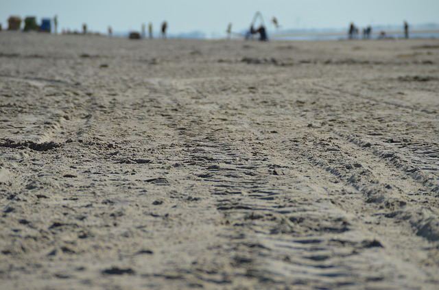 Free trace reprint mature sand