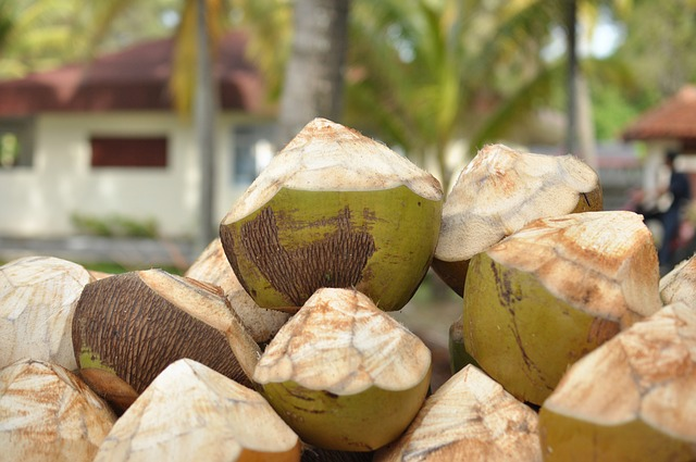 Free coconuts resort drinks