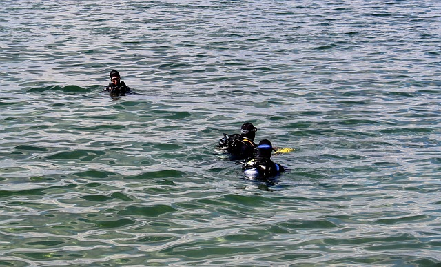 Free divers diver group testing descend before see
