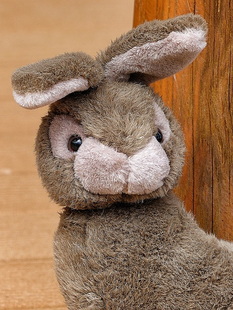 Free fabric bunny child's toy adorable face close up