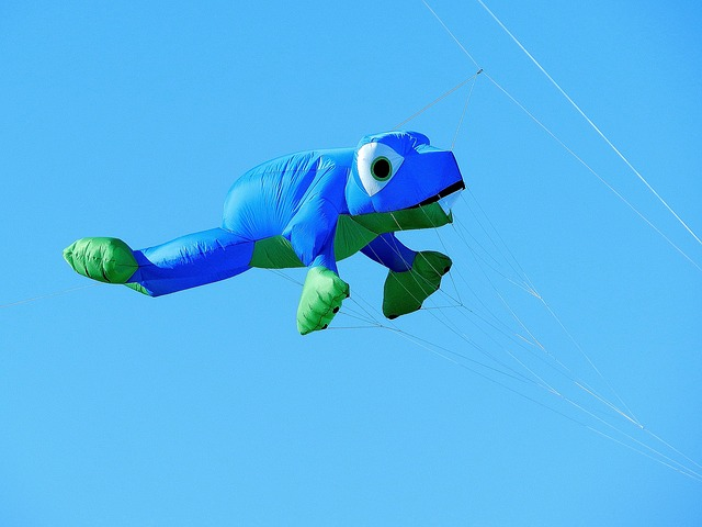 Free balloon dragons frog blue fly sky